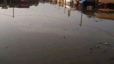 Photo of مدينة روصو وأزمة مياه الأمطار