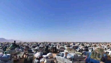 Photo of هام : آخر أخبار منقبي الشكات على لسان شاهد عيان