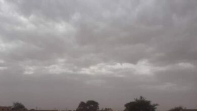Photo of كيفة : أجواء خريفية اليوم 04/03/2021