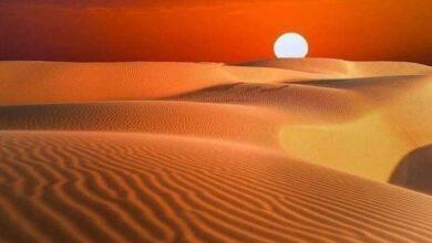 Photo of مناخ: يوليو 2021 الأشد حرا في تاريخ الأرض على الإطلاق حسب وكالة أمريكية